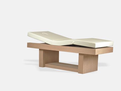 Manak Electric Spa Massage Table